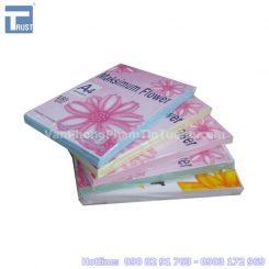 Bia thai mau a4 - 0908 291 763